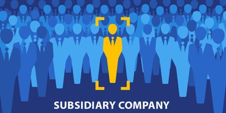 subsidiary company registration - Set-up Subsidiary