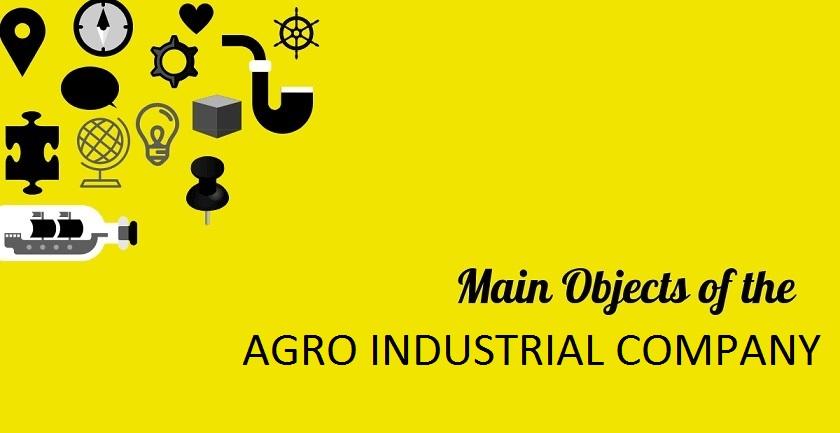 MAIN OBJECT OF AGRO INDUSTRIAL COMPANY - MAIN OBJECT OF AGRO INDUSTRIAL COMPANY