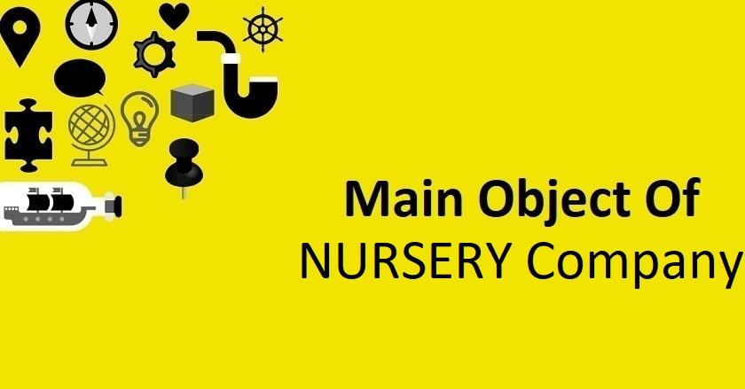 Main Object Of NURSERY Company